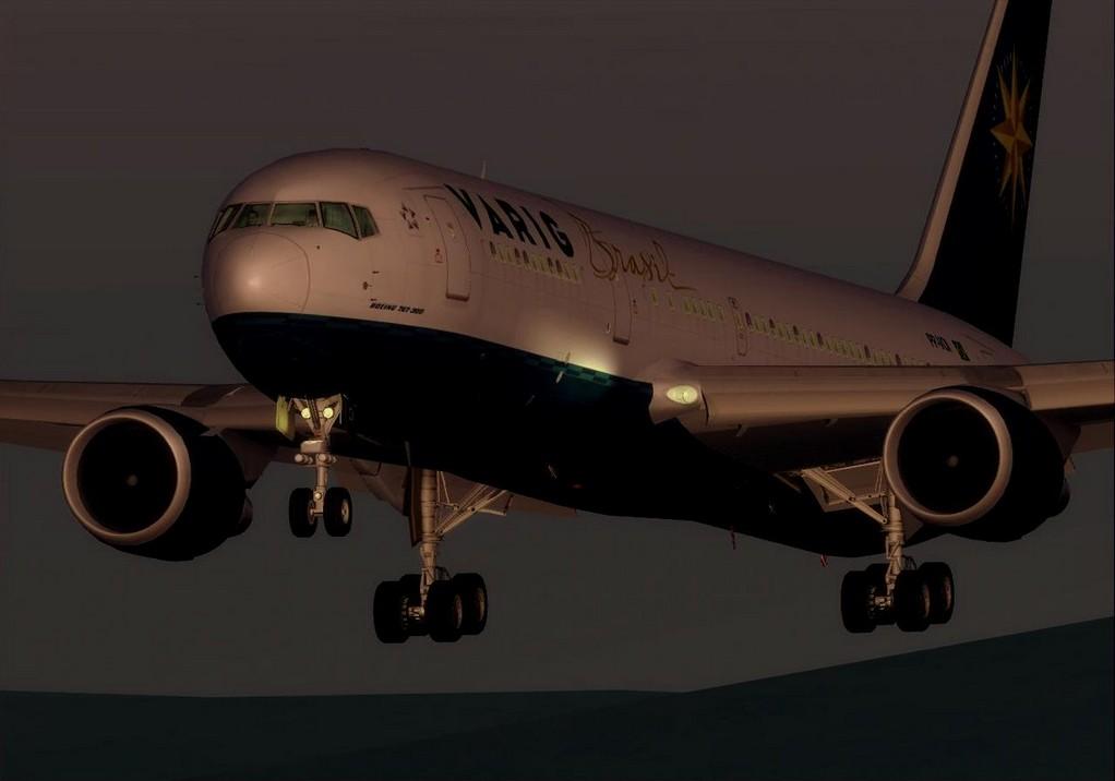 Level-D 767-300 (HAWAIIAN and VARIG)